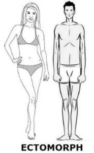 ektomorfik vücut tipi için beslenme önerileri