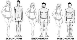 ektomorfik mezomorfik endomorfik vücut tiplerine göre beslenme