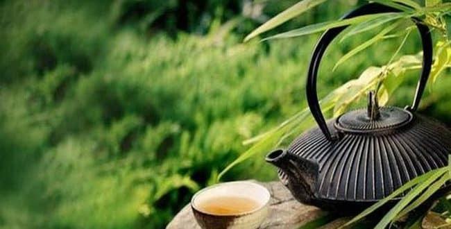 Yeşil çay zayıflatır mı, faydaları nelerdir? İşte diyet listelerinde yeşil çayın faydaları