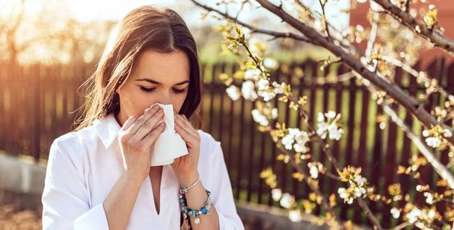 İklim değişikliği alerjilerin seyrini de değiştirdi